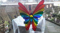 Regenboogvlinder ❤❤❤❤❤❤