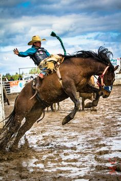 They aint afriad of a little mud. whatever gets them the buckle the money and the pride #rodeo