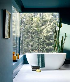 bath, bathtub, tub, dark, cactus, view, green, turquoise, white, Formoso Petite bath, ClearStone range, Clearwater Baths