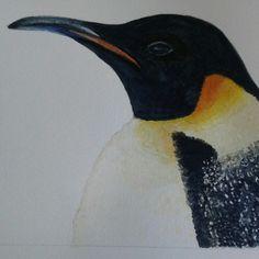 Penguin Watercolour by AF MORRIS