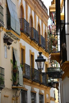 Seville, Andalusia, Spain. http://www.costatropicalevents.com/en/costa-tropical-events/andalusia/welcome.html