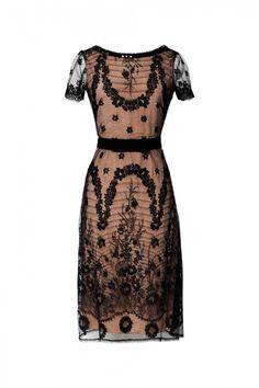 Magical Vine Lace Short Sleeve Dress - Collette Dinnigan