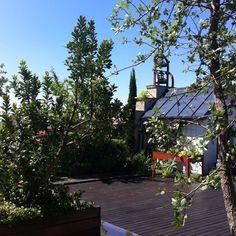 Gardens on the roof  La Casa Encendida, Madrid