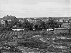 Etu-Töölö, Bergan huvila-alue. Kuvattu nykyisen Minervankatu 3:n kohdalta pohjoiseen, 1912