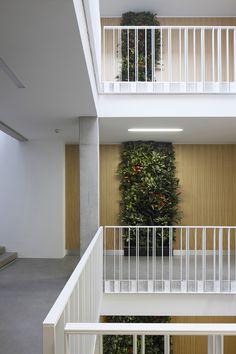 Galería - Complejo Residencial Ciekurkrasti / AB3D - 9