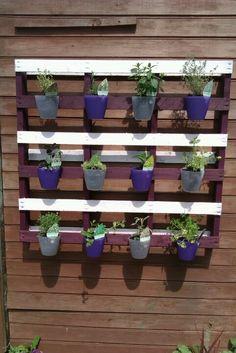 My New hanging herb garden