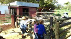 https://www.facebook.com/englishfarmsevilla/posts/840687236063075 Vive una gran experiencia en English Farm - Granjaescuela Cuna. ¡Celebra tu cumpleaños o pasa uno de tus veranos más inolvidables!  ENGLISH FARM – Granja Escuela CUNA facebook.com/englishfarmsevilla Ctra Sevilla - Huelva, Km. 7,5 – Espartinas, Sevilla Tfnos.: 955 710 092 / 670 068 136 www.granjaescuela.com cuna@granjaescuela.com  Promocionado por Globalum. Marketing en Redes Sociales facebook.com/globalumspain