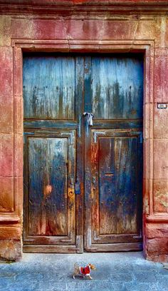 While shooting doorways in San Miguel, Mexico, this tiny dog walked into frame. Big Doors, Cool Doors, Unique Doors, Closed Doors, Windows And Doors, Entrance Doors, Doorway, Door Knockers, Door Knobs
