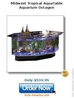 Cool Fishtank Coffee Table