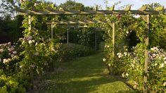 Je crée un jardin de style anglais