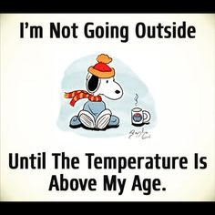 Im not going outside until the temperature is above my age #coldaf #word #snoopy