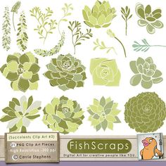 Succulents Clip Art - Create DIY Chic Wedding Invitations - Digital Floral Graphics - Instant Downoad - Personal and Commercial Use Plant Illustration, Graphic Design Illustration, Watercolor Cards, Watercolor Flowers, Hens And Chicks, Doodle Designs, Cactus Print, Album Design, Dollar Store Crafts