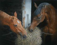 MIKE HAKEN'S OTHER HORSE PORTRAIT GALLERY