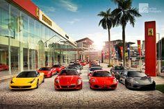 Morning Glory - Ferrari Owners Club Malaysia Chinese New Year 2012 Drive