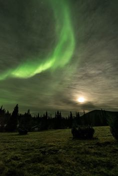 Moonlight at Pallas, Lapland, Finland