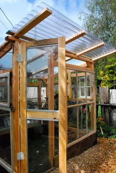 Greenhouse from corrugated plastic roofing, old windows, 2x4s.