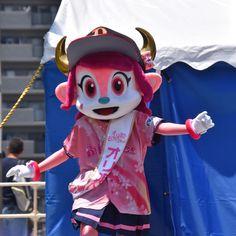 """ちは@ひまっこ on Instagram: """"ポリーさんが大阪にいらっしゃるということで遠征を1週ずらしました。 マスコットステージ3匹とも可愛らしくて🥰 #バファローベル #ポリーポラリス #ポリー #バファローブル #ブルちゃん !? #この日はオリ姫デー #190601 #京セラドーム大阪"""" Orix Buffaloes, Furry Girls, Fursuit, Mario, Kawaii, Cosplay, Animals, Fictional Characters, Instagram"""