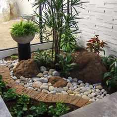 Tropical Landscape Design Ideas, Pictures, Remodel & Decor