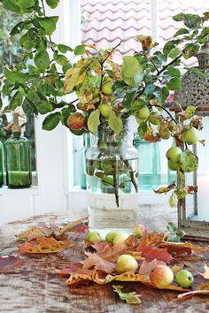 VIBEKE DESIGN: Autumn Days in the orangerie!