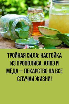 Aloe, Bts, Health, Health Care, Salud, Aloe Vera
