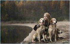 Собаки и природа