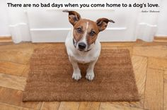 SO true. It's a wonderful thing to come home to.