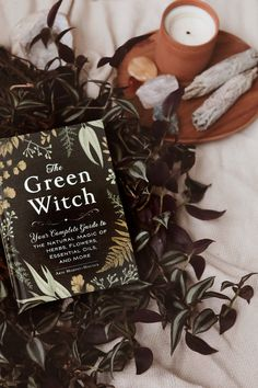 Book Fete Halloween, Blog Deco, Book Aesthetic, Books To Buy, Witch, Essential Oils, Happy, Green, Flowers