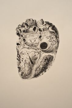 Heart of a Lion (Heracles),2014 pencil on paper Andy Van Dinh