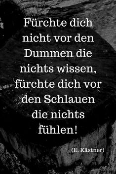 """""""Do not be afraid of the stupid who know nothing, fear the shit . - Aphorismen und Zitate - Welcome Education Some Quotes, Best Quotes, Cool Slogans, Deep Truths, Feeling Nothing, Do Not Be Afraid, Word Porn, Writing Prompts, Quotations"""