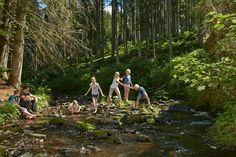 Foresta nera, in Germania per una vacanza all' insegna del verde