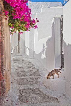 Emporio village, Santorini island ~ Greece     www.liberatingdivineconsciousness.com