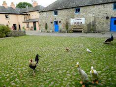 18th century gamekeeper's cottage County Clare, Ireland, U.K.