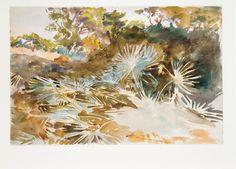 John Singer Sargent | Landscape with Palmettos | The Metropolitan Museum of Art
