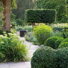 Chris Moss landscape: great variety in structural shapes and colour green.