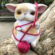 Good morning! 😊 We play in the park 🌳🐈🌸 Have a nice day! ☀️ #cat #catlover #catstagram #fantasyart #fantasycreature #instaart #awww #cute #wip #polymerclay #ooak #ooaktoy #ooakdoll #creature #originalart #art #dollsofinstagram #instaartist #sculpture #etsy #arttoy #artdoll #clay #handmade #fimo #mo_creatures #mosweetfactory #niezchinzpasji #artwork #instadoll