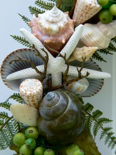lovely collection of Sea Shells - think this is a wreath. Beautiful !!! It's all in the presentation.