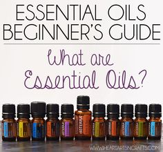 Essential Oils Beginner's Guide - Everything you need to know!