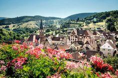 Station verte et fière de l'être, A l'Est, il y a toujours du nouveau quand il s'agit de préserver le patrimoine naturel. Plaines bosselées de la Meuse, crêtes vosgiennes, vignes pentues et territoires industriels de Meurthe-et-Moselle ou du Rhin… Là, des anges gardiens sont sur tous les fronts, qu'il s'agisse de convertir un village à l'ère de l'après-pétrole, de sauver les cigognes et un hamster sauvage, ou de fabriquer du vin en regardant la lune.Au cœur du parc naturel régional des…