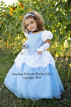 CInderella Princess Dress Costume Halloween by 7dwarfsworkshop $55 http://www.etsy.com/shop/7dwarfsworkshop