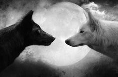 Framed Print - Two Wolves Facing Off In Front Of A Full Moon (Picture Wolf Art