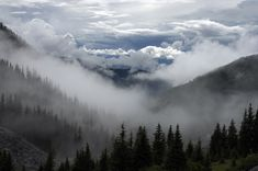 Like the cloudline hanging over the mountains...you're not sure where the mist over the forest ends and where the sky begins. www.unsplash.com