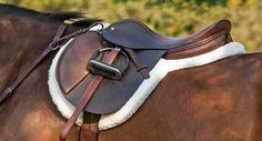 Saddle, Horse Country, Warrenton VA