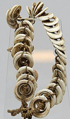 Papua New Guinea . Conus Shell Wealth Ornament Currency. Ceremonial Dance Waist…