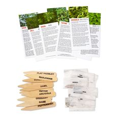 THE PLANT! HERB SEED KIT | seed, garden, grow, indoor, plant, seedling, herbs | UncommonGoods