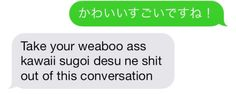 This reminds me of my friends XD every time I say something 'weeaboo' related, I swear this is what they say