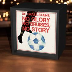 No Grass Stains Soccer