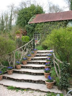 Beautiful steps to a vine covered cottage