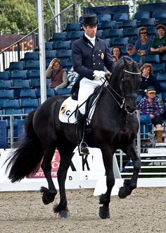dressage.  //Beautiful horse EL//