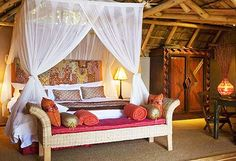 safari theme room