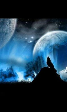Howling Wolf Photo: This Photo was uploaded by Lady_Quintessa. Find other Howling Wolf pictures and photos or upload your own with Photobucket free imag. Fantasy Wolf, 3d Fantasy, Fantasy Images, Fantasy Artwork, Dark Fantasy, Final Fantasy, Fantasy Castle, Fantasy Setting, Fantasy Landscape